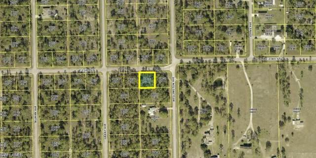 3406 E 23rd Street, Alva, FL 33920 (MLS #221034138) :: Premiere Plus Realty Co.