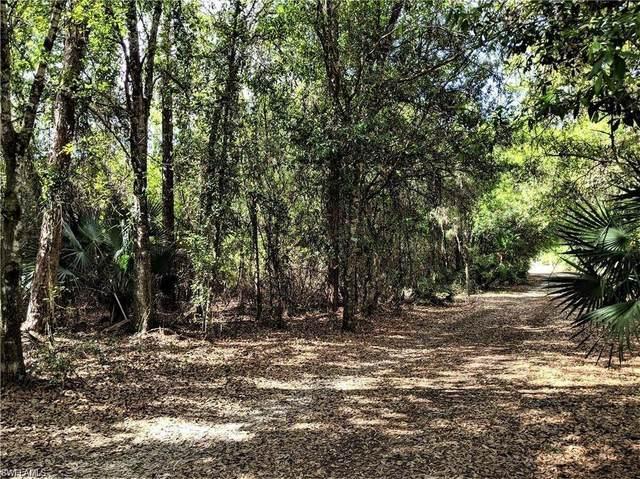 5200 Hendry Isles Boulevard, Clewiston, FL 33440 (MLS #221034471) :: Domain Realty