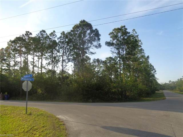 332/334 Rockland Street, Lehigh Acres, FL 33972 (MLS #221034557) :: Wentworth Realty Group