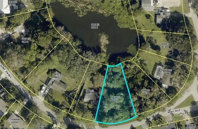 766 June Parkway, North Fort Myers, FL 33903 (#221035298) :: Jason Schiering, PA