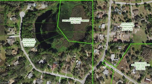 Osceola Drive, New Port Richey, FL 34654 (MLS #221035719) :: Team Swanbeck