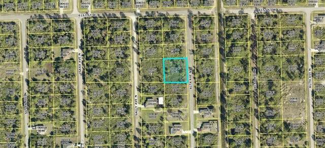 6011 Rita Avenue N, Lehigh Acres, FL 33971 (#221036400) :: The Dellatorè Real Estate Group