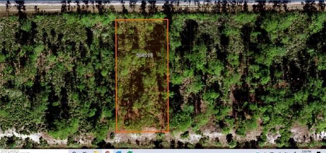 807 Calliandra Drive, INDIAN LAKE ESTATES, FL 33855 (MLS #221036492) :: Bowers Group | Compass