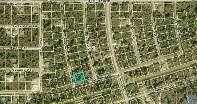 141 Blount Avenue S, Lehigh Acres, FL 33974 (#221036725) :: Southwest Florida R.E. Group Inc