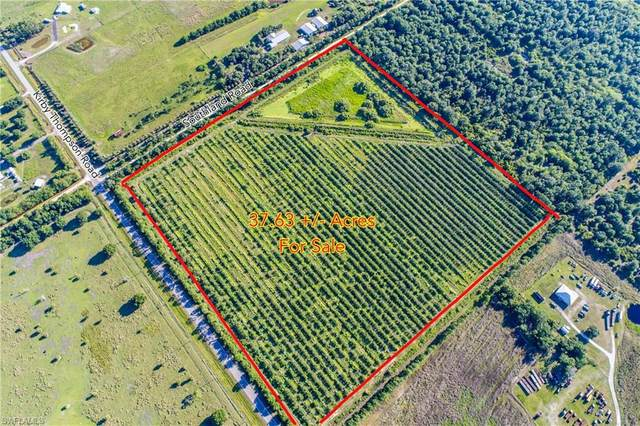 1120 Southland Road, Labelle, FL 33935 (MLS #221036999) :: Clausen Properties, Inc.