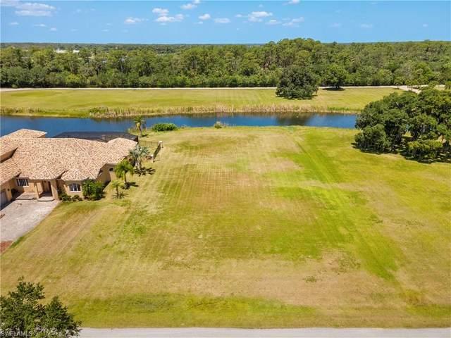 17070 Serengeti Circle, Alva, FL 33920 (#221037206) :: The Dellatorè Real Estate Group