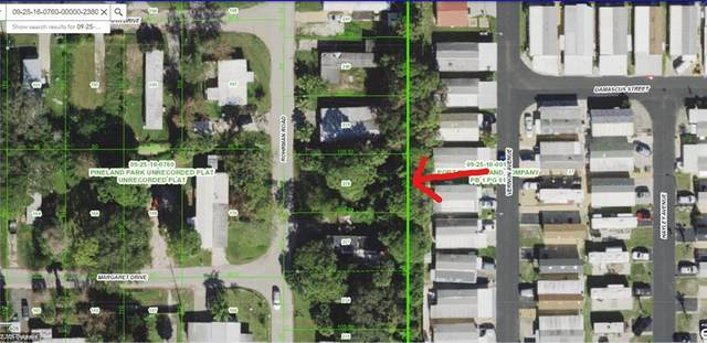 11414 Rohrman Road, Port Richey, FL 34668 (MLS #221037579) :: Realty One Group Connections