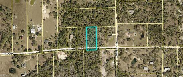 22905 Tinas Lane, Fort Myers, FL 33913 (MLS #221038679) :: Wentworth Realty Group