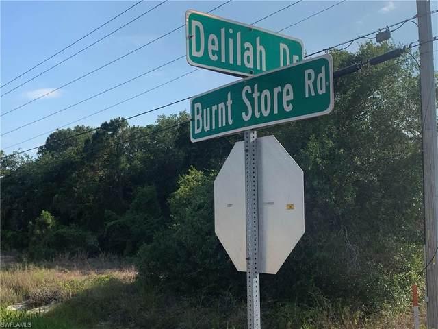 3206 Delilah Drive, Cape Coral, FL 33993 (MLS #221039521) :: Domain Realty