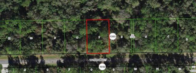 271 W Eridani Court, Citrus Springs, FL 34434 (MLS #221039839) :: The Naples Beach And Homes Team/MVP Realty