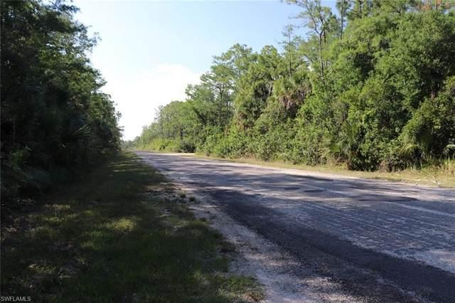310 Lakeridge Boulevard, Lehigh Acres, FL 33972 (MLS #221040236) :: Wentworth Realty Group