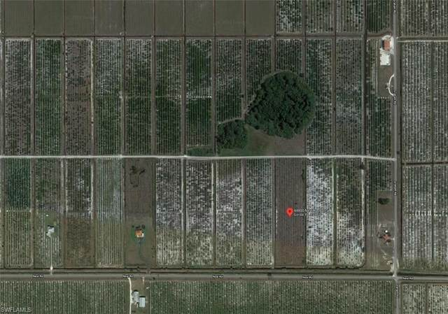 44800 Neal Road, Punta Gorda, FL 33982 (#221044131) :: Southwest Florida R.E. Group Inc