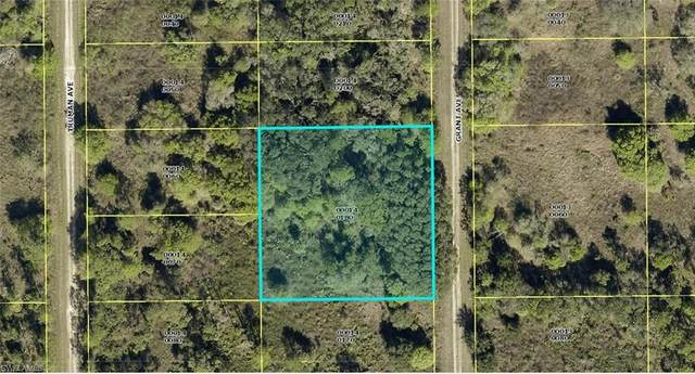 1311 Grant Avenue, Lehigh Acres, FL 33972 (#221044925) :: The Dellatorè Real Estate Group