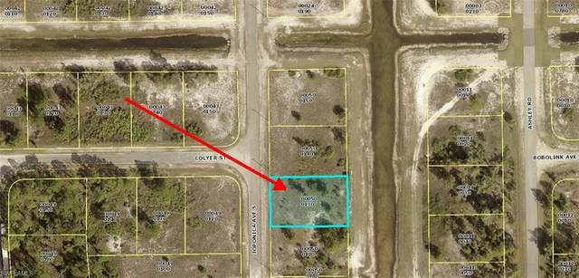 745 Joponica Avenue S, Lehigh Acres, FL 33974 (MLS #221045155) :: The Naples Beach And Homes Team/MVP Realty