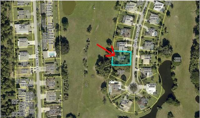 4135 Prestwick Court, North Fort Myers, FL 33903 (MLS #221045264) :: Realty One Group Connections