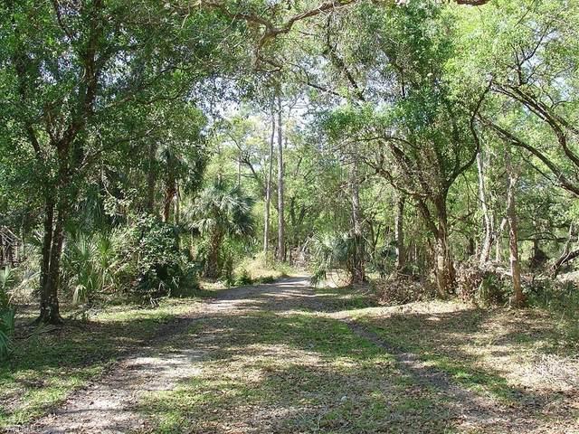 975 Silver Lake Road, Labelle, FL 33935 (MLS #221045986) :: Team Swanbeck