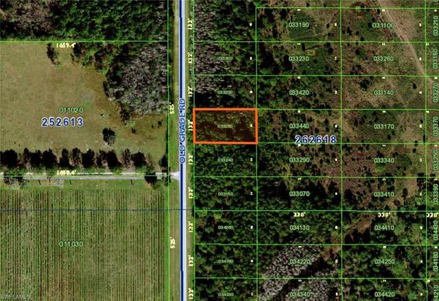 Old Grade Road, POLK CITY, FL 33868 (MLS #221046462) :: Team Swanbeck