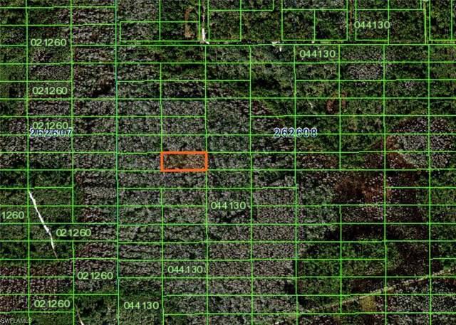 Address Not Published, POLK CITY, FL 33868 (MLS #221046471) :: Team Swanbeck