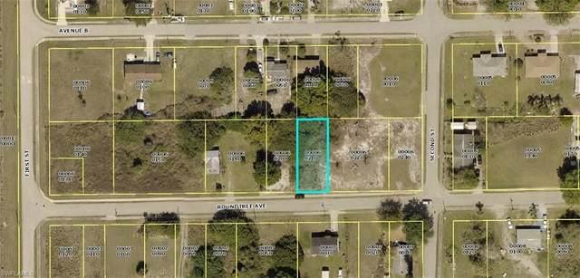 23081 Roundtree Avenue, Alva, FL 33920 (#221049567) :: Southwest Florida R.E. Group Inc
