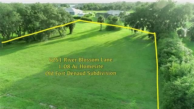5251 River Blossom Lane, FORT DENAUD, FL 33935 (MLS #221049806) :: Florida Homestar Team
