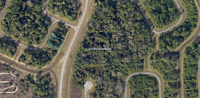 402 Skipper Terrace, Labelle, FL 33935 (MLS #221051624) :: Team Swanbeck
