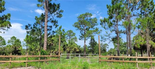 445 S Kennel Street, MONTURA RANCHES, FL 33440 (MLS #221051998) :: Domain Realty