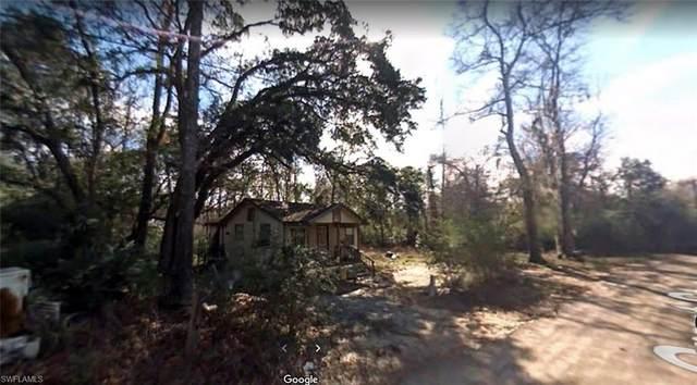 97 Grant Street, CHATTAHOOCHEE, FL 32324 (MLS #221052441) :: Domain Realty