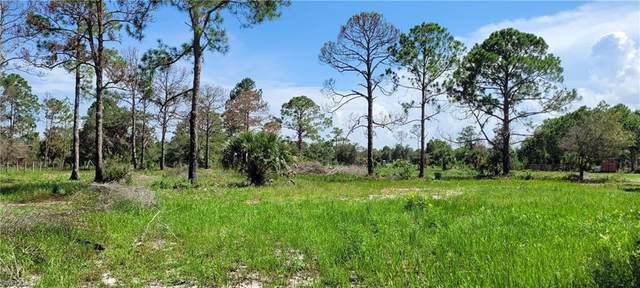 384 Hunting Club Avenue, Clewiston, FL 33440 (MLS #221052495) :: Domain Realty