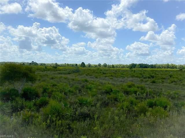 49631 Bermont Road, Punta Gorda, FL 33982 (MLS #221053098) :: Realty World J. Pavich Real Estate
