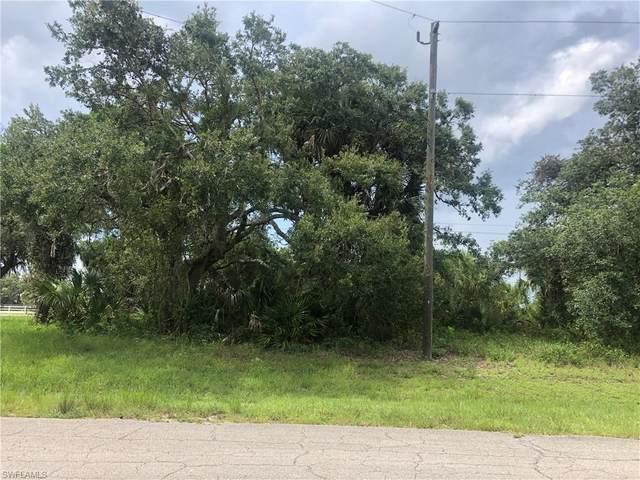 5037 Wild Goose Circle, Labelle, FL 33935 (MLS #221054156) :: Florida Homestar Team