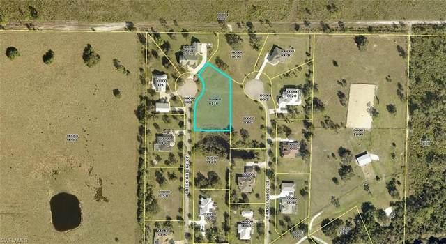 18900 Creek Bridge Court, Alva, FL 33920 (#221055272) :: Southwest Florida R.E. Group Inc
