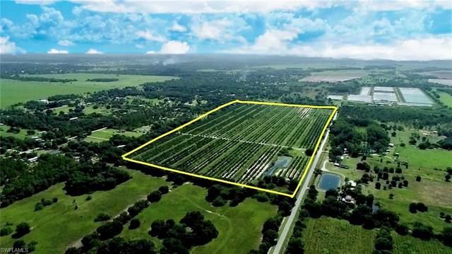1536 A Road, Labelle, FL 33935 (MLS #221056212) :: #1 Real Estate Services