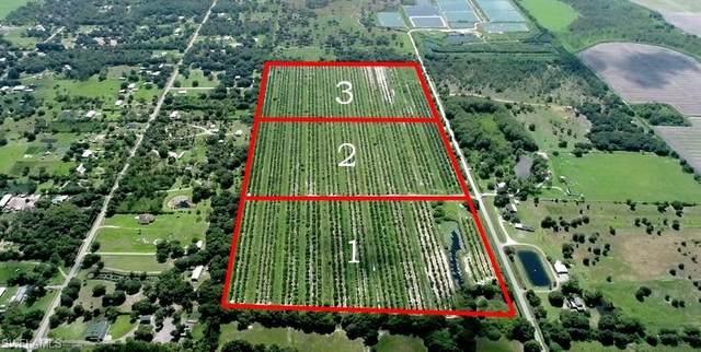 A Road, Labelle, FL 33935 (MLS #221056240) :: #1 Real Estate Services