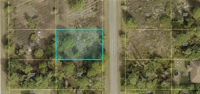 764 Oakridge Avenue S, Lehigh Acres, FL 33974 (MLS #221056599) :: #1 Real Estate Services