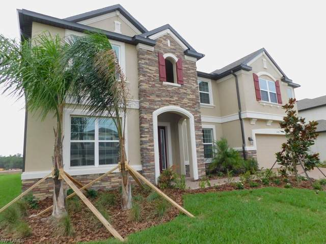 11004 Sundrift Drive, Tampa, FL 33647 (MLS #221056610) :: Realty One Group Connections