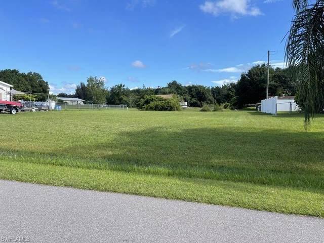 29318 Lillis Street, Punta Gorda, FL 33982 (MLS #221059583) :: Realty World J. Pavich Real Estate