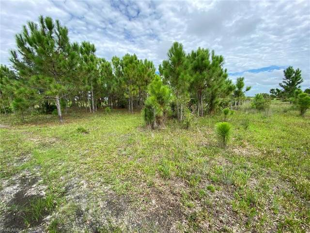 49679 Bermont Road, Punta Gorda, FL 33982 (MLS #221060216) :: Realty One Group Connections