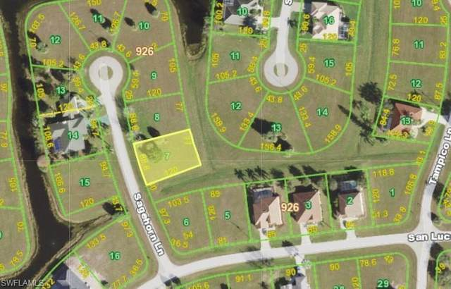 17290 Sagehorn Lane, Punta Gorda, FL 33955 (#221061459) :: Jason Schiering, PA