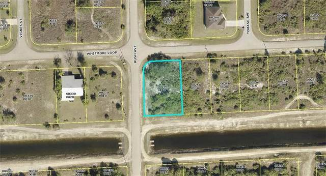 699 Whitmore Loop, Lehigh Acres, FL 33972 (MLS #221063540) :: Team Swanbeck