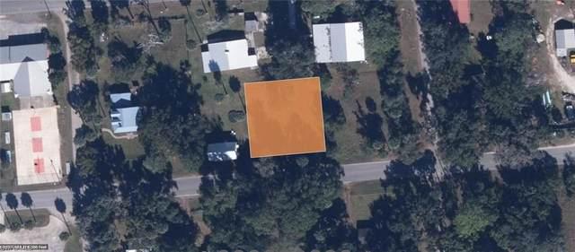 3002 Elm Street, WELAKA, FL 32193 (MLS #221064197) :: Team Swanbeck