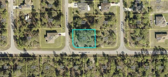 1814 Ridgemoor Street, Lehigh Acres, FL 33972 (MLS #221064834) :: Team Swanbeck