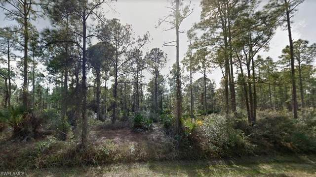 3402 E 22nd Street, Alva, FL 33920 (MLS #221065559) :: Realty One Group Connections