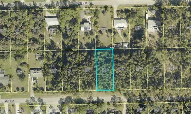 3552 Mango Street, St. James City, FL 33956 (#221066105) :: Southwest Florida R.E. Group Inc