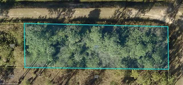 325 Fitch Avenue, Lehigh Acres, FL 33936 (MLS #221067059) :: Waterfront Realty Group, INC.