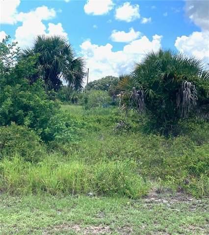 3048 Birwood Circle, Labelle, FL 33935 (MLS #221067119) :: Team Swanbeck