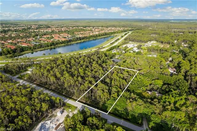24199 Melaine Lane, Bonita Springs, FL 34135 (MLS #221068047) :: The Naples Beach And Homes Team/MVP Realty
