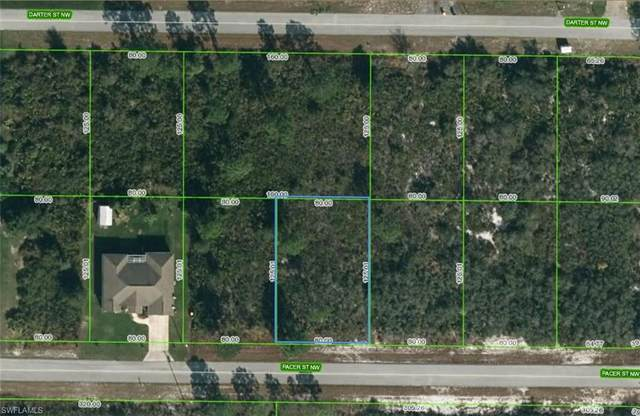 217 Pacer Street NW, Lake Placid, FL 33852 (MLS #221069571) :: #1 Real Estate Services