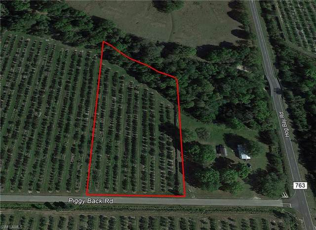 SE Piggy Back Road, Arcadia, FL 34266 (MLS #221071901) :: Clausen Properties, Inc.