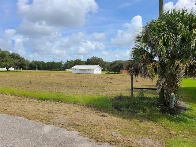 1143 Pollywog Drive, Labelle, FL 33935 (MLS #221071936) :: Team Swanbeck