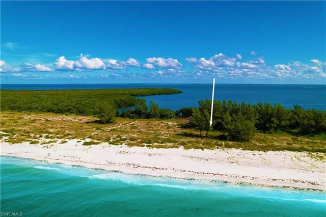 11630 Redfish Shores Drive, Upper Captiva, FL 33924 (MLS #221072839) :: #1 Real Estate Services